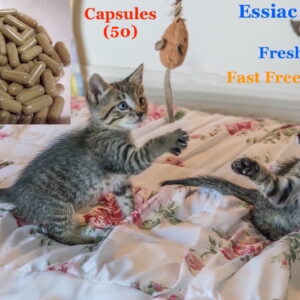 essiac for cats