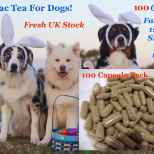 essiac for dogs 100 capsules