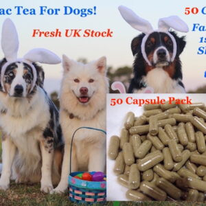 50 essiac capsules for dogs