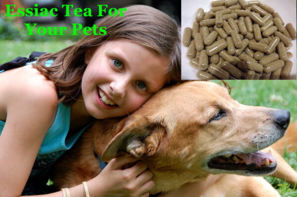 essiac tea capsules for pets